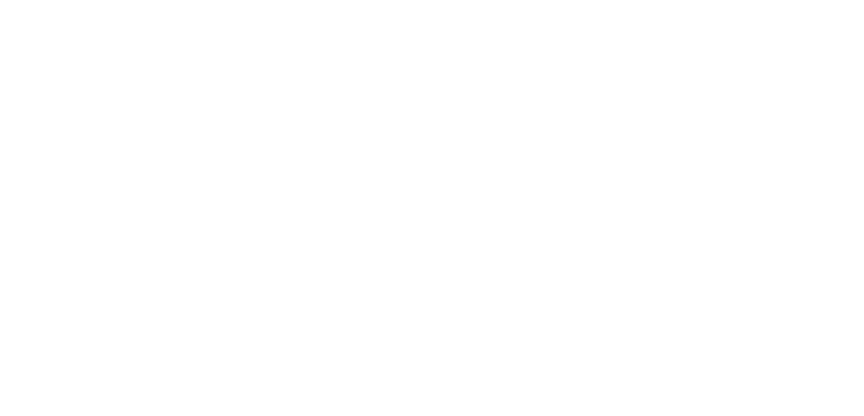 Borch Architekten